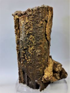 Very rare sample of fossilized manganese - 12 x 8 x 4 cm - 320 gr