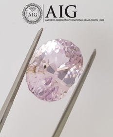 Kunzite – 13.76 ct – no reserve price