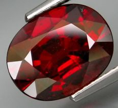 Spessartite Garnet – 4.36 ct  - No Reserve Price