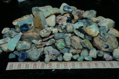 Natural Rough Big Lightning Ridge Opal Parcel, Australia . Fossil's/Seam/Noby/Rubs/ Some fires  2000 Cts !  No Reserve Price!