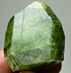Well Terminated Translucent Green Diopside Crystal  - App. 37 X 34 X 13 mm  -  170 Ct