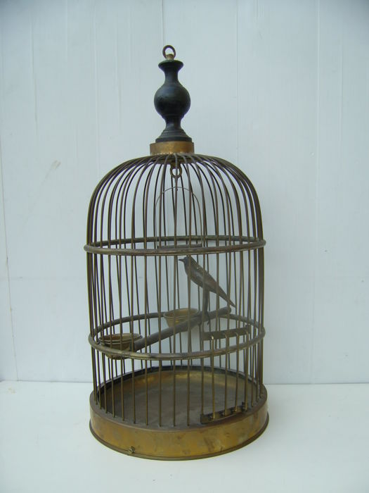 Nice wooden bird cage with wooden bird