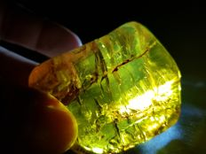 Natural Mexican congac green Amber - 5.5 x 4.9 x 3.4 cm - 61 gram