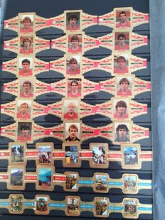 Large collection of cigar bands in 3 albums and a case with approx. 2600-2800 items