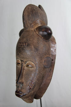 Large Ceremonial Kpan Mask - BAULE - Ivory Coast