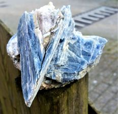XL Kyanite Crystal Cluster + Mica + Quartz  - 135 x 115 x 90 mm - 1,033 kg