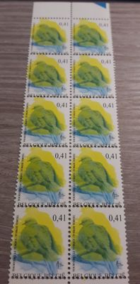 "Belgium 2002 – Buzin ""Collared Dove"" with shifted colour print – OBP 3135 x 10"