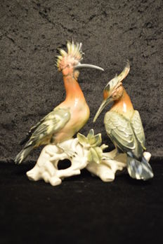 Karl Ens hoopoe pair
