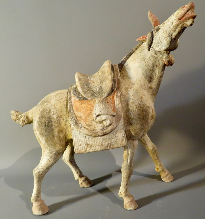 Pottery horse from the Tang dynasty, with TL test - 35,5cm high X 35cm long