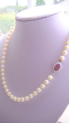 Akoya pearl necklace approx. 0.78 cm diameter with 585 white gold ruby clasp no reserve price