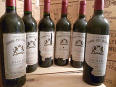 1996 Chateau Grand-Puy Ducasse, Pauillac - 6 bottles (75cl)