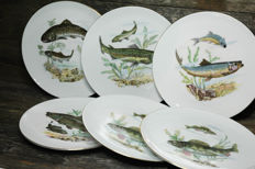 "6 plates with fish Motif / Kahla Porcelain ""Made in GDR"" with gold rim"