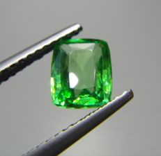 Tsavorite Green Garnet - 1.04 ct