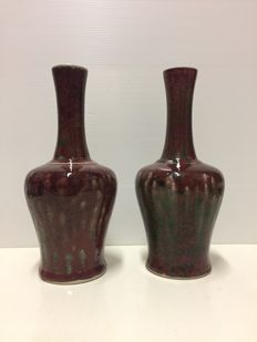 Pair of porcelain vases - China - Late 20th century