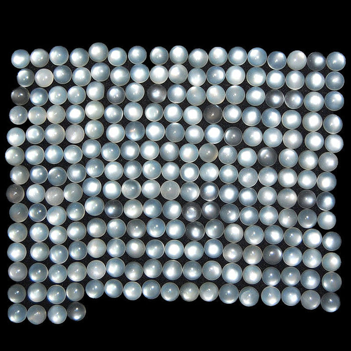 Moon stone cabochons - 303 ct - 224 pieces