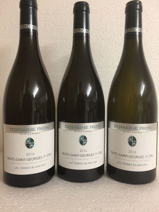 2016 Nuits St Georges 1 er Cru Terres Blanches (blanc), Domaine Patrice Rion - 3 bottles