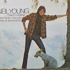 Lot of 9 vinyl albums of Neil Young