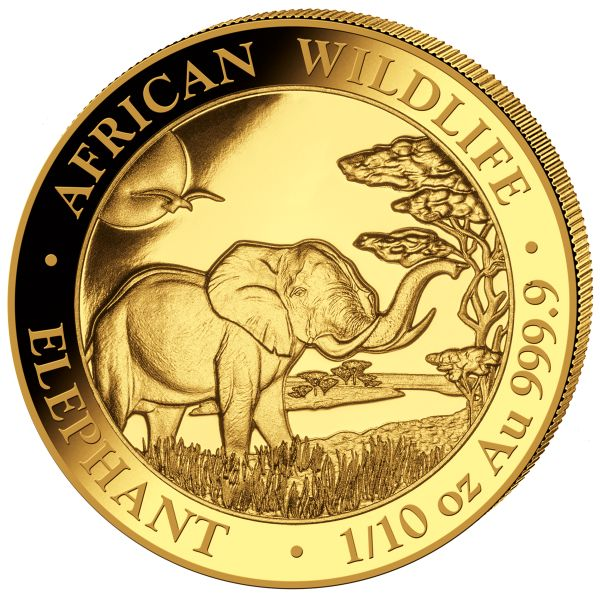 Somalie - 100 Shillings 2019 Elephant - 1/10 oz - Or