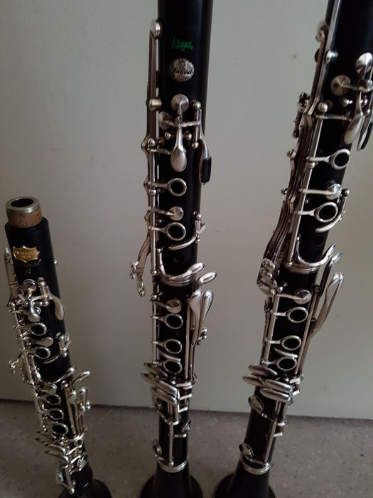 Strange Clarinet Buffet Crampon Festival Green Line Rc Clarinet Bc 13 Patricola Special S Professional Catawiki Download Free Architecture Designs Scobabritishbridgeorg