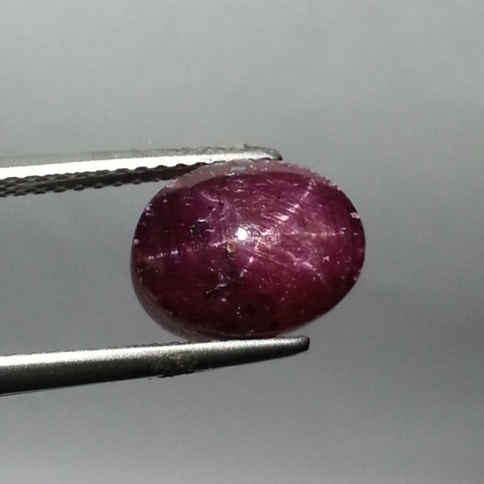 Star Ruby - 6.31 ct - d. purp. red - No Reserve