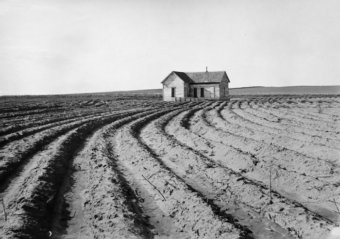 Dorothea Lange (1895-1965)/V&A - Tractored Out, Childress County, Texas 1938