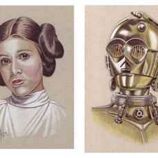 Star Wars - Collectors edition, Lithography Lot of 25 litho's - in Folder, with Coa
