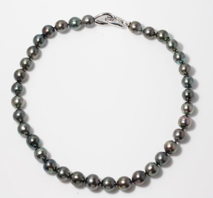 Necklace - Silver - 11x13.5mm Tahitian Pearls