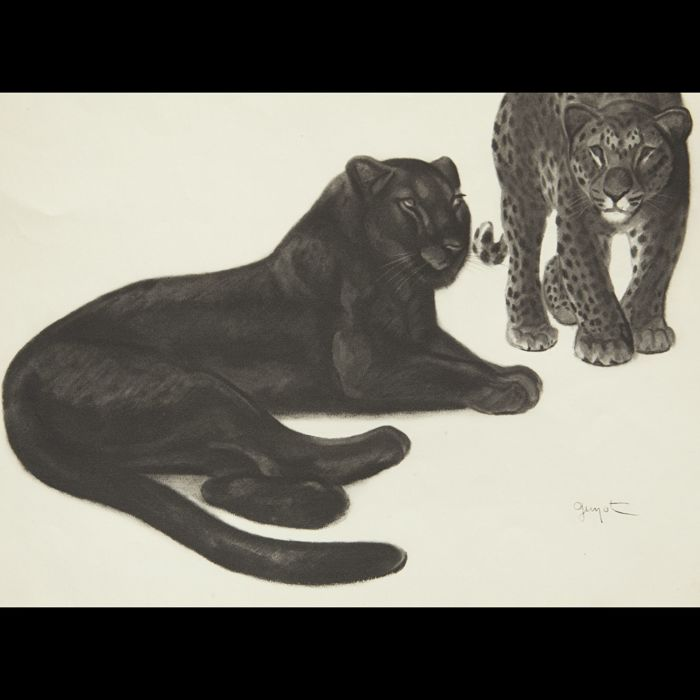 Georges Lucien Guyot - drawing of Guyot