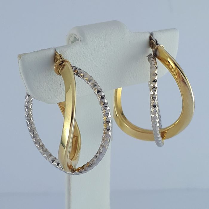 Earrings - Bicolour, Gold