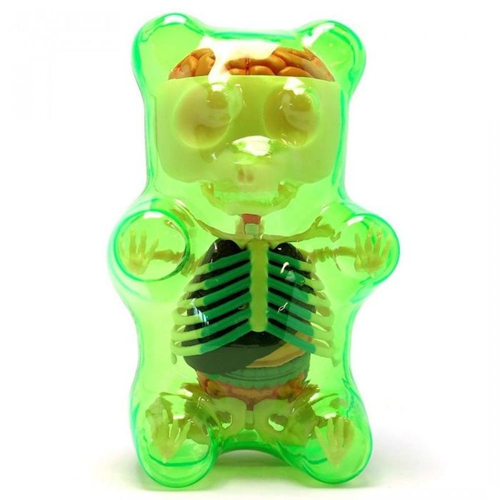 Jason Freeny - Gummi Bear Funny Anatomy XL ( Original )