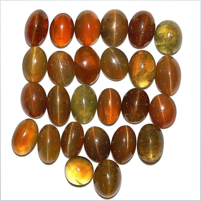 Lot of natural apatite cat's eye cabochons - 173 ct