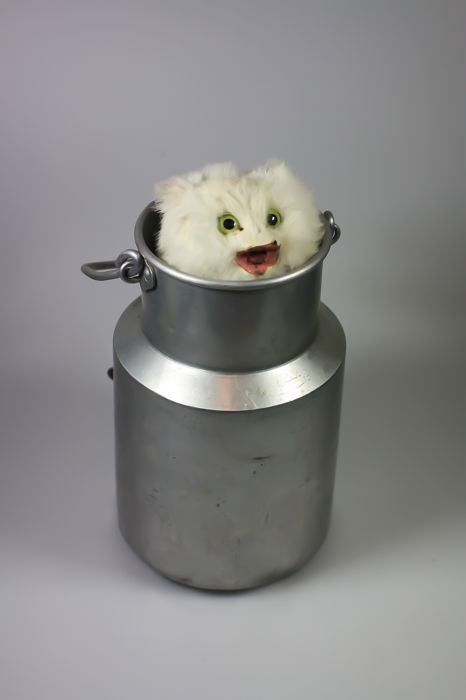 Roullet & decamps Automation Cat in milk churn - Aluminium - about 1880