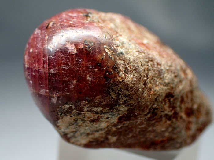 Natural Untreated Star Ruby Red Pencil 186,00ct - 44.89×22.7×20.53 mm - 37.2 g