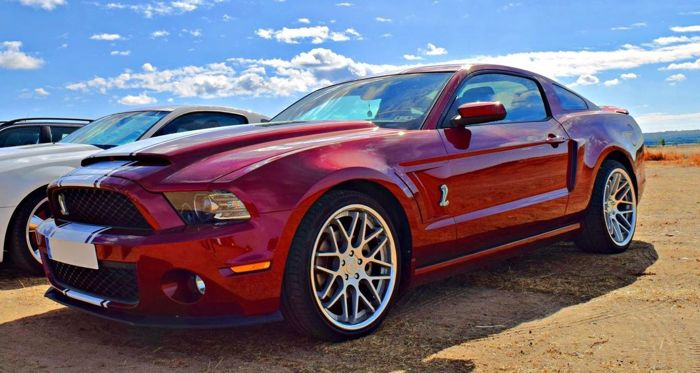 Ford - Mustang Super Snake Clone - 2013
