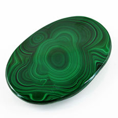 Huge Malachite Cabochon Polished - Best Quality - 75x53x10 mm - 525.00 cts