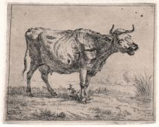 Frederik Theodor Faber (1782-1844) - A cow facing at right - 1806
