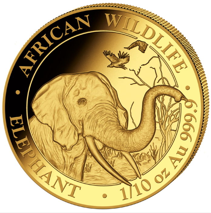 Somalia - 100 Shillings 2018 Elephant - 1/10 oz - Gold