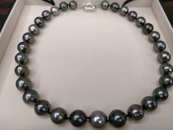 Tahitian pearl necklace, dark colour, high shine, 31 pearls, pearl size 11-13 mm diameter No reserve