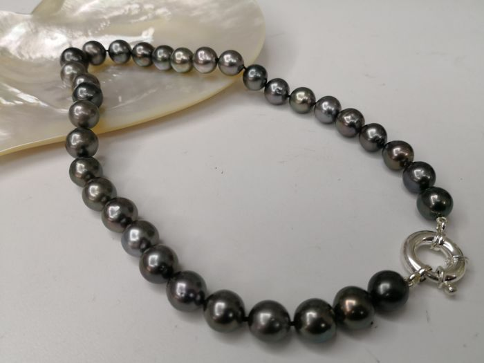 Tahitian pearl necklace, 33 pearls, size 12-14 mm, round, dark colour and high orient  No reserve