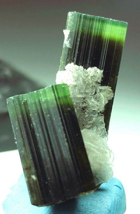 Beautiful green cap tourmaline crystals on matrix -  31 × 22 × 10mm - 10gr - 50.5 ct