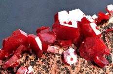 High quality cluster of vivid red Vanadinite - 10.7 X 6.6 X 4.6 cm - 500 gm