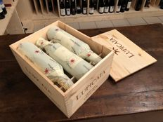 2008 Lupicaia IGT Toscana Castello del Terriccio - 6 bottles (0.75 l) in wooden box