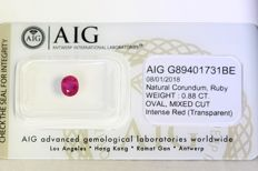 Ruby - 0.88 ct - Intense Red - Fine Color Quality