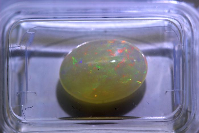 Opal - 2.67 ct - Play of Colour Effect - * NO RESERVE PRICE *
