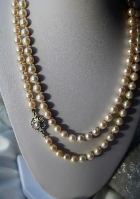 Very long or 2 row necklace 99cm with ivory white Japanse sea/salty Akoya pearls ca. 7,1-7.7mm and approx. 71.4 grams. White gold lock. Wonderful state.