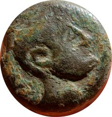 Old Hispania - Very rare As coined in the mint of Iliberri, currently Granada (south of Spain, Andalusia). Sphinx.
