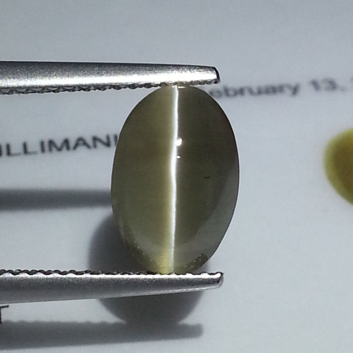 Sillimanite Cat's Eye - 2.94 ct