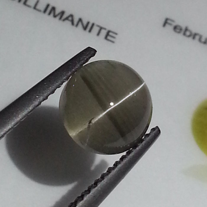 Sillimanite Cat's Eye - 3.37 ct