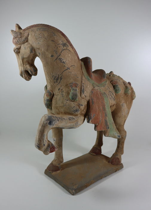 Groot Terracotta paard, Tang stijl  - China - eind 20e / 21e eeuw (39cm)