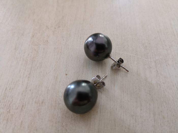 18 kt white gold earrings with 12-13 mm dark Tahiti pearls with excellent orient. No reserve.